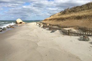 Residential Sand Drift Fence And Beach Nourishment Thumb