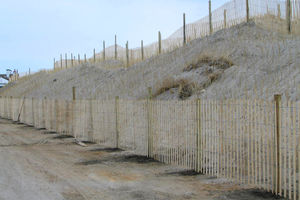 West Dennis Beach And Swan Pond River Dune Construction Thumb